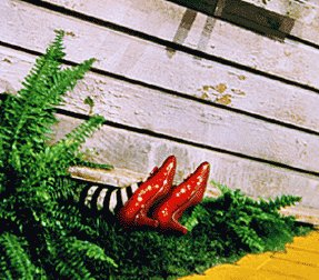 wicked witch ruby slippers