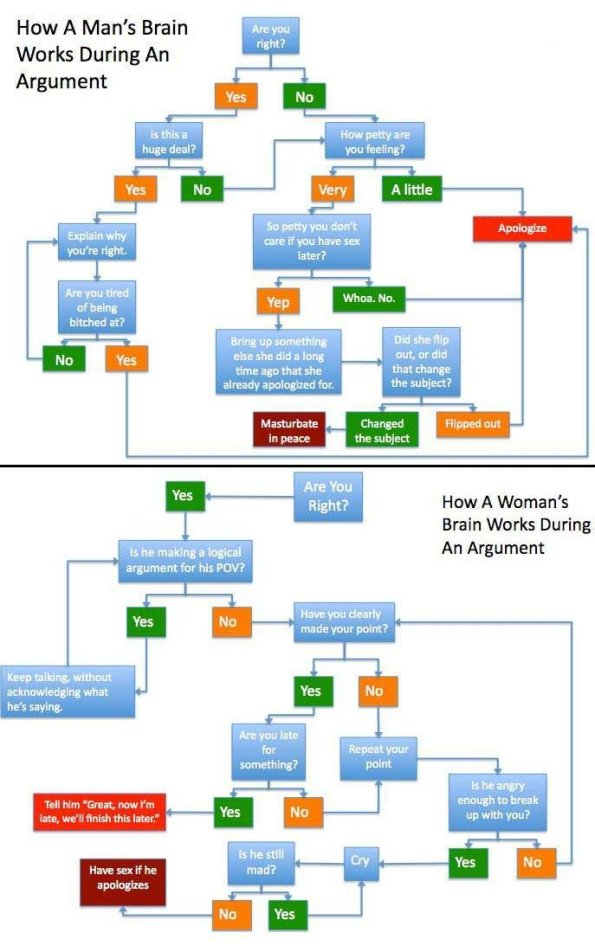 brain argument