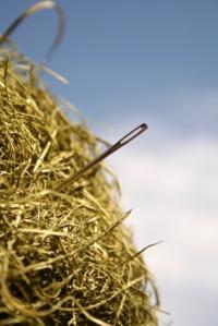 needle-haystack